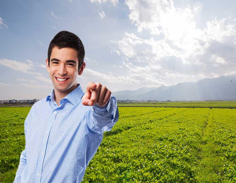 Asesoría para la implantación de cubiertas vegetales permanentes o temporales