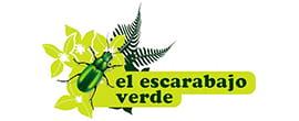 El-escarabajo-verde